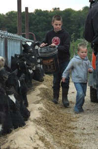 sons with calves
