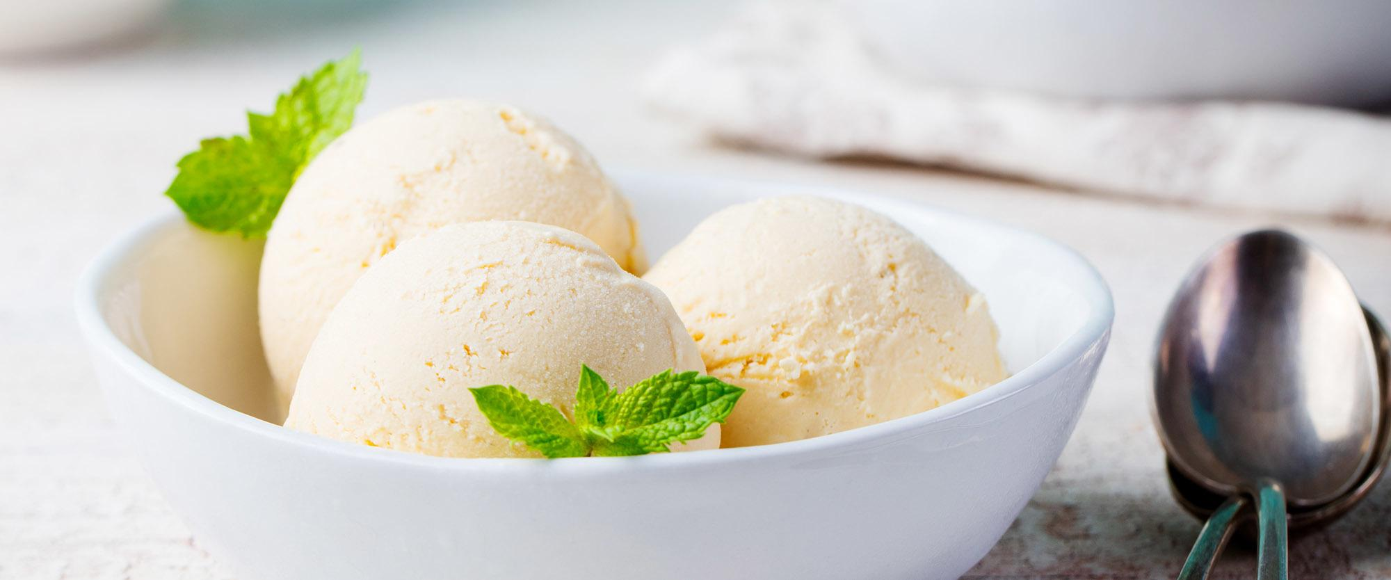 Vanilla Ice Cream with Mint in bowl Organic productVanilla Ice Cream with Mint in bowl Organic productVanilla Ice Cream with Mint in bowl Organic product